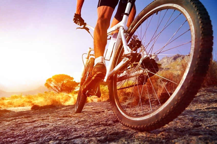 Cycling, Mountain biking, Cycling